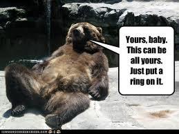 beary single