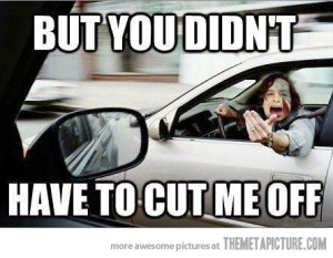 funny-Gotye-cut-me-off-driving